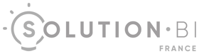 logo solution bi